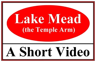 Temple Arm Video